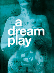 Dream Play poster